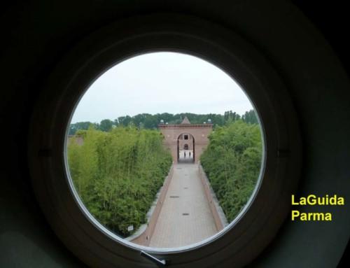 Visita al Labirinto di FMR con una guida