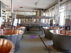 Parmigiano Reggiano - modern equipment inside a caseificio