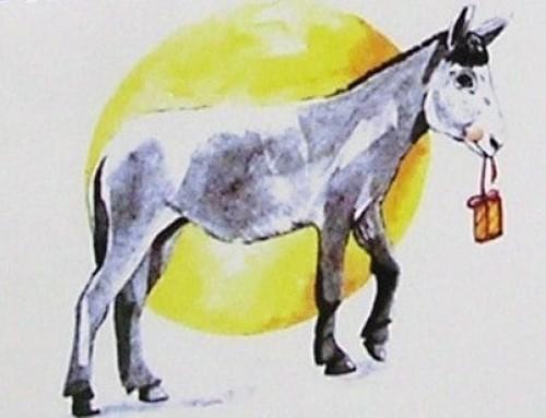 Santa Lucia a Parma fra tradizione e arte